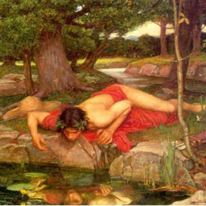 Narcissus - Narciso