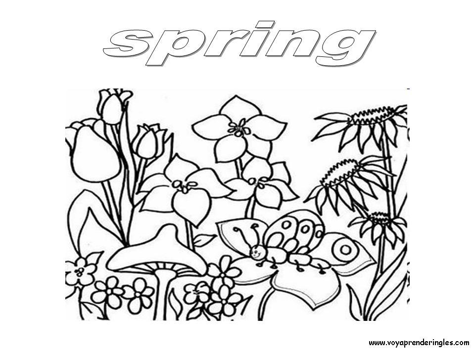 Único Páginas Para Colorear De Preescolar Primavera Foto - Dibujos ...