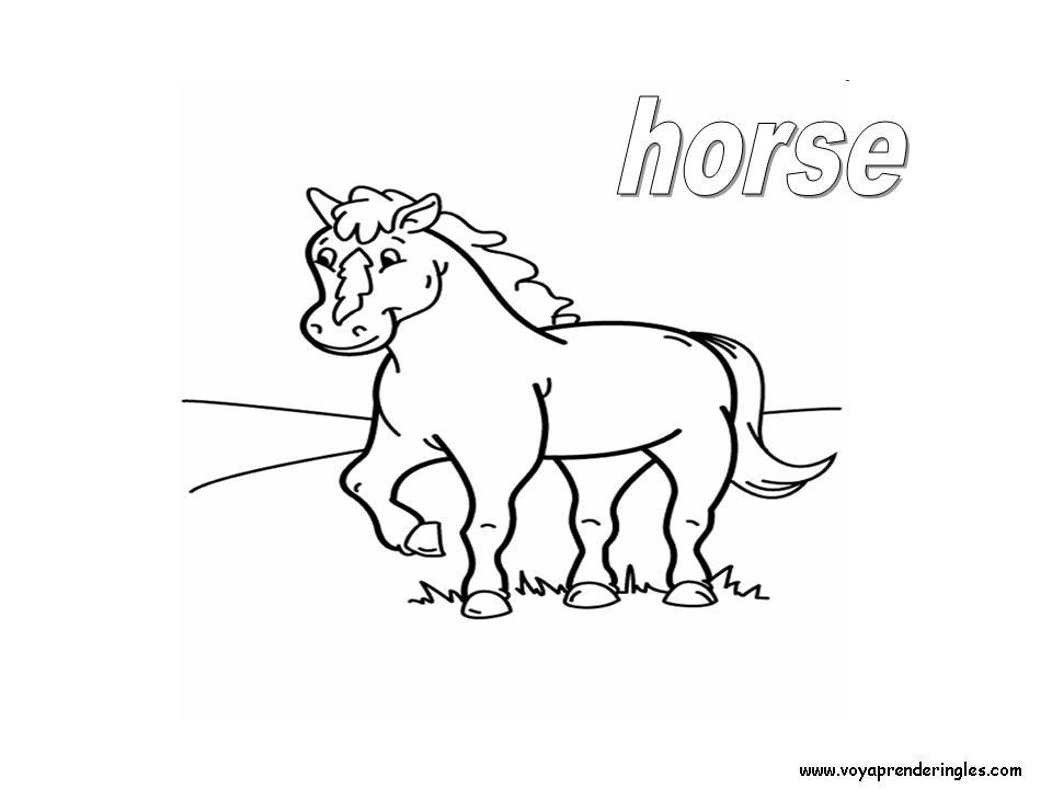 Horse Animals Dibujos Animales Colorear En Inglés