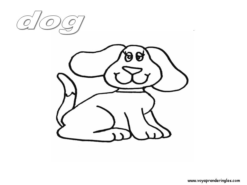 Dog Animals Dibujos Animales Colorear En Inglés