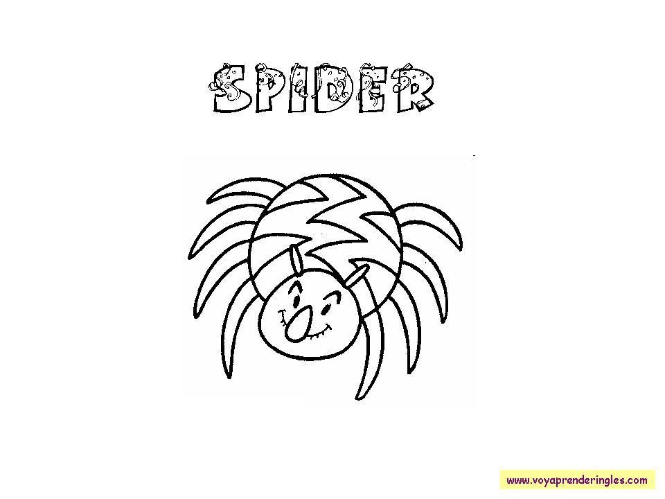 Spider Dibujos Halloween En Inglés