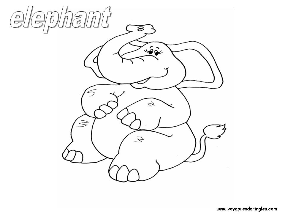 Elephant Animals Dibujos Animales Colorear En Inglés