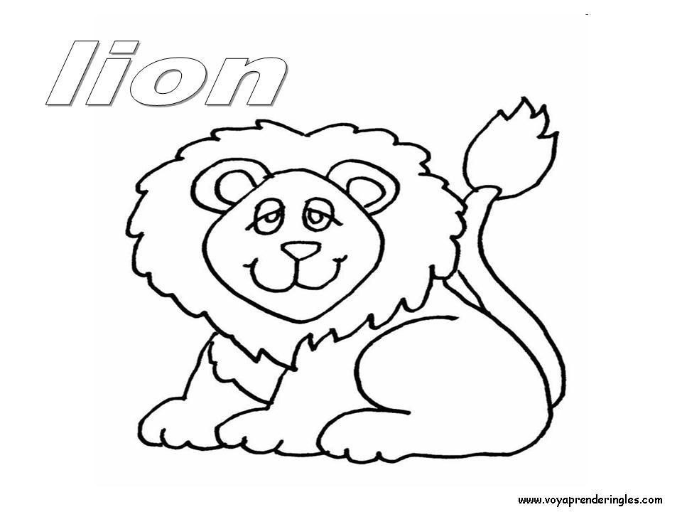 Lion Animals Dibujos Animales Colorear En Inglés