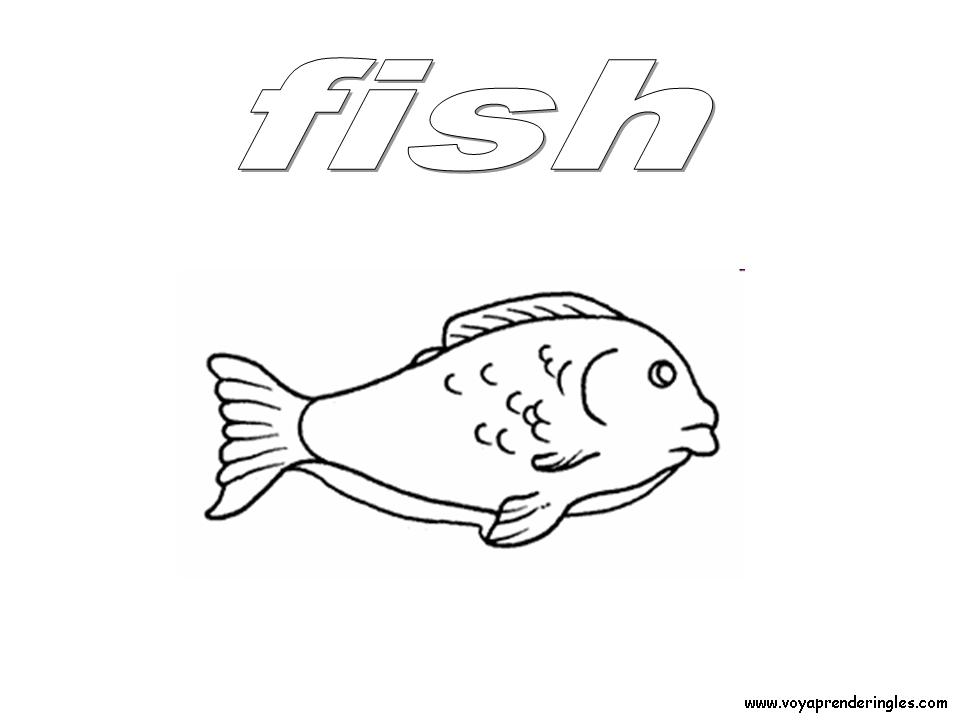 Fish Foods Dibujos Alimentos Colorear En Inglés