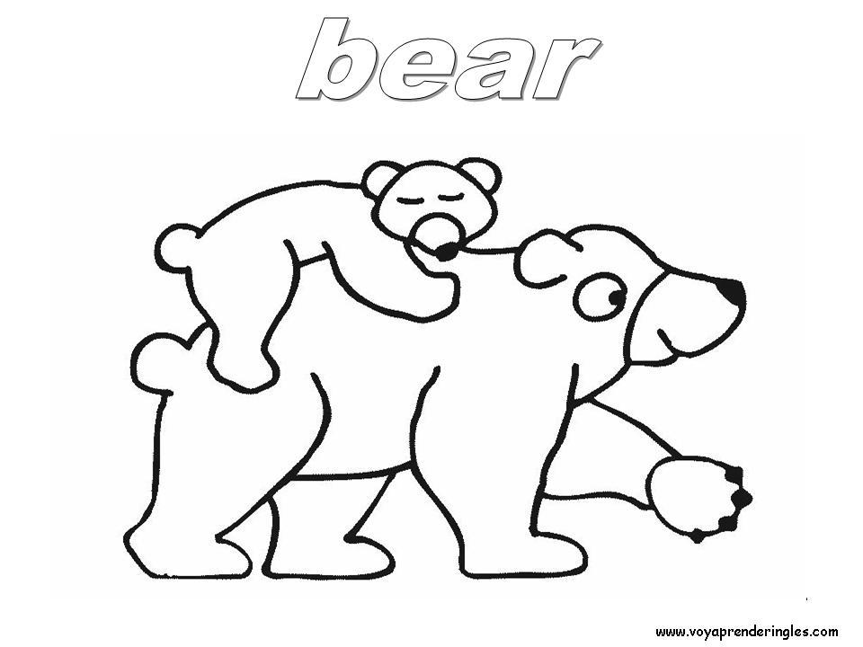 Bear Animals Dibujos Animales Colorear En Inglés