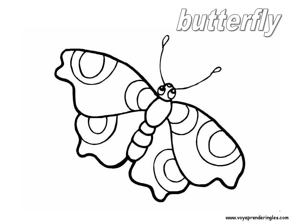 Butterfly Animals Dibujos Animales Colorear En Inglés