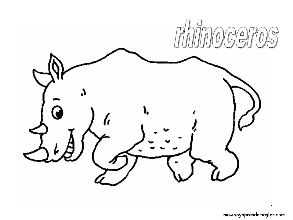 Rhinoceros Animals Dibujos Animales Colorear En Inglés